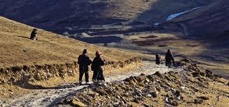 Звериный стиль  у кочевников Северного Тибета